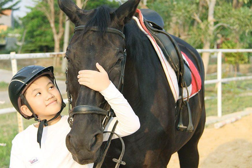 pandesa riding school surabaya sekolah dan lapangan berkuda